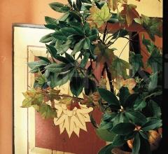 Декоративная панель ART. ST.76/77/78/79 фабрика Patrizia Garganti (Baga)