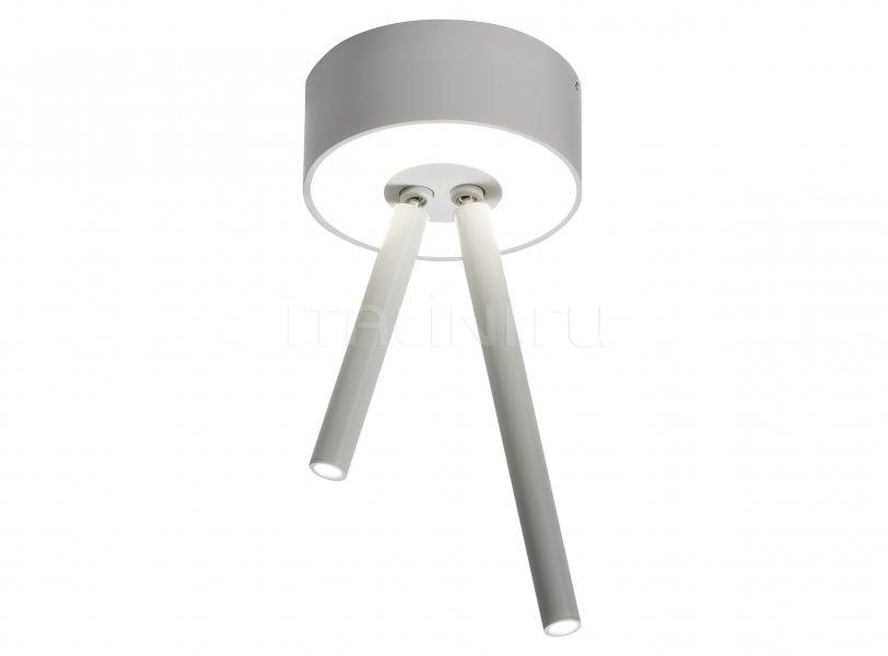 Потолочный светильник VIRTUS Axo Light