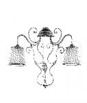 Настенный светильник SOTTOSOPRA 7067/A2+1 MM Lampadari