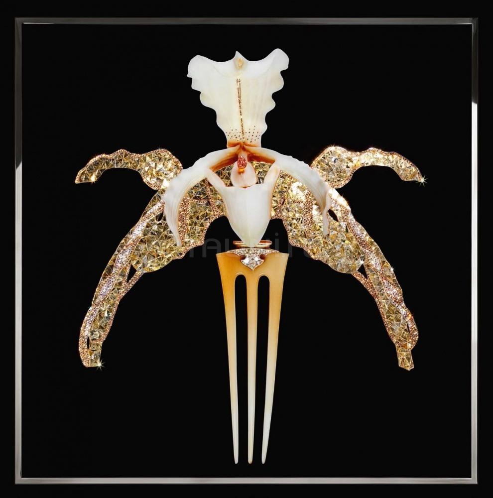 Интерьерная миниатюра Orchidea Lalique IPE Cavalli (Visionnaire)