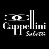 Фабрика Cappellini Salotti