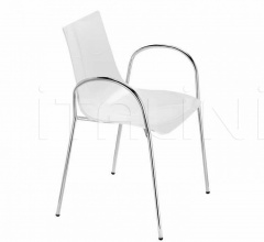 ZEBRA ANTISHOCK with armrests