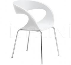 Raff S Chair