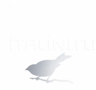 Настенное зеркало SNIJDER BIRD Driade