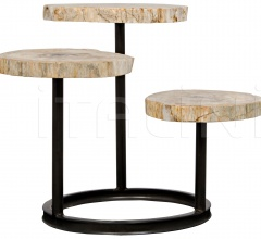 Corado Table, Metal and Petrified Wood AI-73