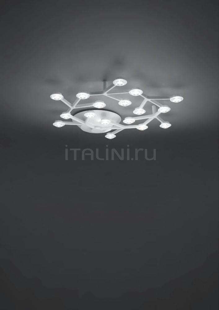 Потолочный светильник Led Net circle Artemide