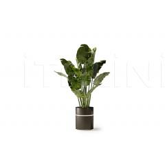 Итальянские цветочные горшки - Горшок POT2/POT3 фабрика Bizzotto