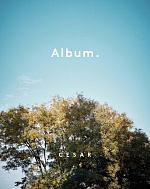 Новый каталог Album от Cesar