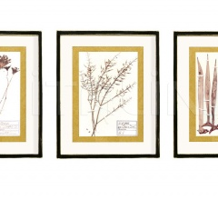 Итальянские картины - Картина Grasses, Wild, Jucca фабрика Cantori